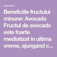"""Beneficiile fructului minune: Avocado Fructul de avocado estefoarte mediatizat in ultima vreme, ajungand chiar sa fie denumit """"fructul anului"""". Pentru aceia dintre dumneavoastra care nu au consumat pana acum avocado, dar si pentru cei care l-au consumat sau il consuma, insa nu stiu ce ... Avocado, Metabolism, Guacamole, Smoothie, Cancer, Salads, Lawyer, Smoothies"""