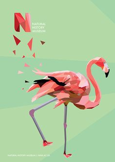 Tropical Birds on Behance / flamingo, digital, design, graphics, geometric, shape, logo, poster