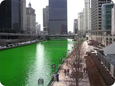 As part of a more than forty year old Chicago tradition, the Chicago River is dyed green in observance of St. Patrick's Day.