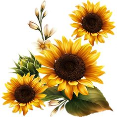 Autumn by KmyGraphic on DeviantArt - - Autumn by KmyGraphic on DeviantArt Virágok Herbst von KmyGraphic Sunflower Drawing, Sunflower Art, Colorful Drawings, Art Drawings, Sunflower Quilts, Sunflowers And Daisies, Sunflower Pictures, Alcohol Ink Crafts, Sunflowers