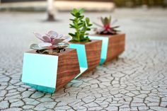 painted planters