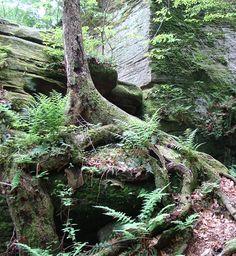 Crow's Nest at Panama Rocks Park, Panama, NY.