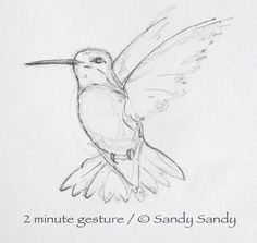 Oh look, a hummingbird managed to get through all the sketches of eyes :P