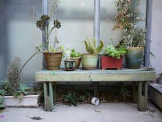 garden02 by yoo_ii, via Flickr