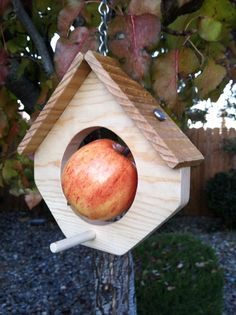 Hanging bird house style apple bird feeder by villagerich on Etsy