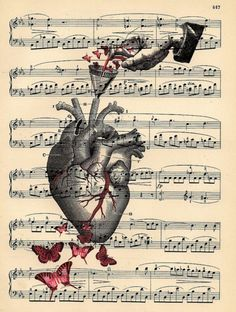 Butterfly Heart Anatomy Anatomical Heart with by BlackBaroque Book Page Art, Book Art, Art Sketches, Art Drawings, Heart Anatomy, Newspaper Art, Medical Art, Anatomical Heart, Dictionary Art