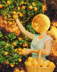 Space fruit | par Mariano Peccinetti Collage Art