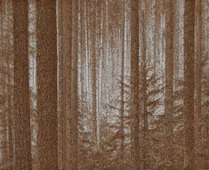 Artist Makes Startling Digital Montage Of A Forest With 139,000 Cigarette Butts