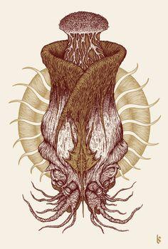 Squid print on Behance