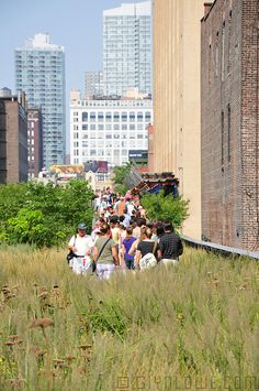 The High Line, West Side #NYC #parks