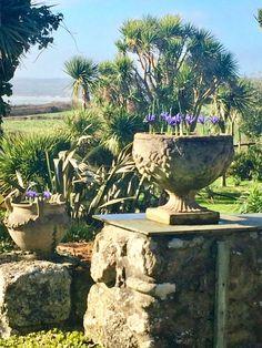 West Cornwall, Farm Gardens, Fountain, Wildlife, Seasons, Outdoor Decor, Plants, Seasons Of The Year, Water Fountains