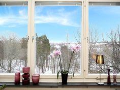 Stora fönster bredvid varandra