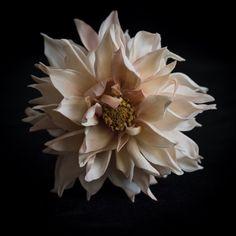 #dahliacafèaulait #coldporcelain #flowers #sugarart #botanicart