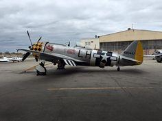 "P-47N Thunderbolt ""Jacky's Revenge"" N1345B #44-90447, Jeff Clyman/American Airpower M., Republic NY."