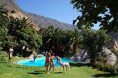 Paraiso Las Palmeras Lodge
