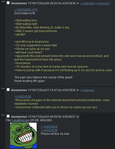 94 Best Greentext images in 2019   Funny, Memes, Funny pictures