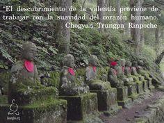 """"""" El descubrimiento de la valentía proviene de trabajar con la suavidad del corazón humano."""" Chogyan Trungpa Rinpoche"""