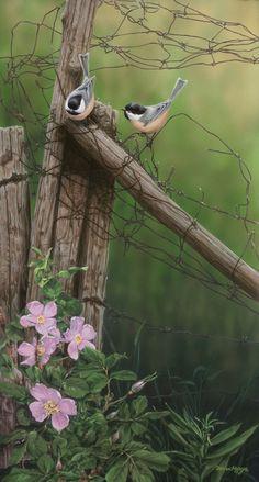 Darren Haley 'Spring Chickadees'