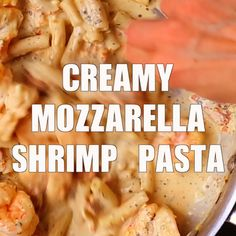 healthy eating - Creamy Mozzarella Shrimp Pasta When I tried this I used sharp white cheddar instead of Mozzarella, and I took out the sun dried tomatoes before I mixed in everything Also had a basil fiasco so drained some of that And I used the whole bo Fish Recipes, Seafood Recipes, Chicken Recipes, Cooking Recipes, Healthy Recipes, Cooking Rice, Pasta Recipes Video, Healthy Food, I Love Food