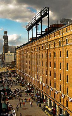 Baseball Park, Baseball Season, Sports Baseball, Baseball Stuff, Softball, Sports Stadium, Stadium Tour, Yankee Stadium, Camden Yards
