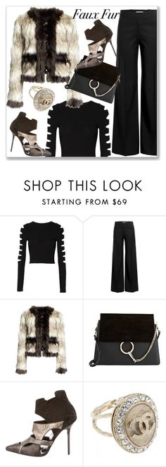 """""""Cropped Faux Fur Coats"""" by andrejae ❤ liked on Polyvore featuring Cushnie Et Ochs, J.W. Anderson, Chloé, Diego Dolcini, Chanel, women's clothing, women, female, woman and misses"""