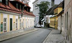 Stadtspaziergang: Sievering Vienna Austria, Homeland, Travel, Vienna, Environment, Woodland Forest, City, Alone, Other
