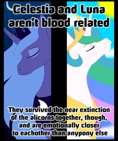 Blood makes you related, loyalty makes you family. My Little Pony List, My Little Pony Comic, My Little Pony Pictures, My Little Pony Friendship, Celestia And Luna, Princess Celestia, Cartoon Theories, Cartoon Conspiracy, Disney Conspiracy