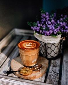 Filterkaffee testsieger dating