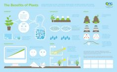 benefits-of-plants-environmental-infographic-infographic