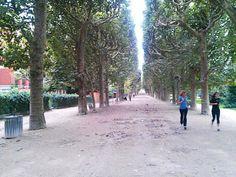 Running in Paris' Jardin des Plantes, the botanical gardens on the Left Bank, next to the Sorbonne University neighborhood.