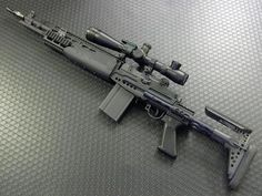 M14 EBR...my grail gunLoading that magazine is a pain! Get your Magazine speedloader today! http://www.amazon.com/shops/raeind