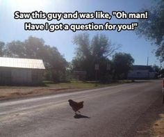 Why did the chicken...Visual Consumer