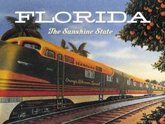 Florida the Sunshine State #tampahomesforsale