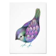 Whimsical Colored Pencil Bird - art by Carmen Medlin
