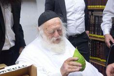 Photos: Rav Chaim Kanievsky Inspecting Esrogim this Morning for Sukkos 5755 » Matzav.com - The Online Voice of Torah Jewry