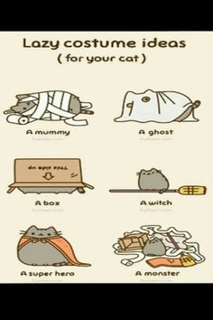 Lazy cat costumes r right here