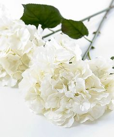 As with all our carefully selected silk flowers these huge full blooming white hydrangea stems are realistic and very beautiful If the stems are too