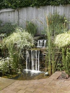 for Every Kind of Yard and Landscape Take a look at ideas for water features including pools, fountains, waterfalls and ponds.Take a look at ideas for water features including pools, fountains, waterfalls and ponds. Backyard Patio Designs, Ponds Backyard, Backyard Ideas, Pergola Ideas, Garden Ponds, Backyard Pergola, Deck Patio, Patio Ideas, Diy Deck
