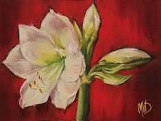 Mary Van Deman Artworks Gallery Amaryllis Bulbs, Go Red, Flower Art, Art Flowers, Fine Art Auctions, Fine Art Gallery, White Flowers, Congratulations, Christmas Gifts