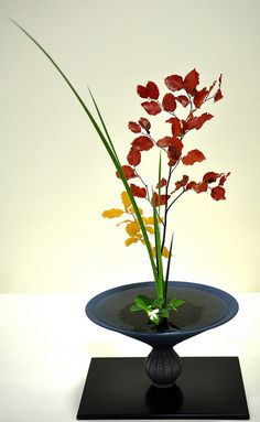 ikebana flower arrangements. I liked going to the shows/ competitions.