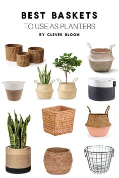 indoor planters Forget the fact that pretty much every decor style uses baskets. Baskets are a perfect way to cover ugly nursery pots or switch up your your style in seconds. Take a look at the best baskets to use planters. Tall Indoor Plants, Indoor Plants Low Light, Indoor Trees, Small Plants, Cool Plants, Indoor Plant Pots, Mini Plants, Water Plants, Potted Plants