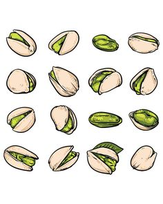 80% Off Sale Set of Pistachios, Hazelnuts, Pistachios. Hand drawn sketch Pistachios vector illustration. (EPS, VECTOR, JPG)