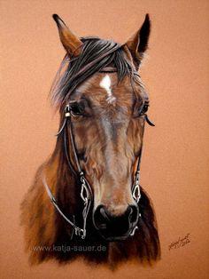 horse pastel painters - Google Search