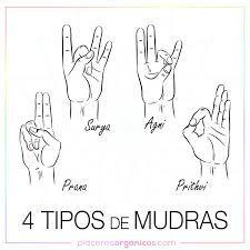 Mudras Y Su Significado En Español Búsqueda De Google Mudras Consejos De Yoga Español