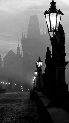 Dark & foggy night along a cobblestone pathway lined with gaslight lamposts and gargoyle statues, leading towards a castle. Dark Photography, Artistic Photography, Black And White Photography, Street Photography, Landscape Photography, Dark Fantasy, Fantasy Art, Dark Castle, Gothic Aesthetic