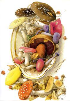 Artist ~ Marjolein Bastin - mushroom tray from October 2009 Calendar