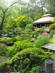 Japanese Tea Garden: quaint garden with a tea house, fun bridges and koi ponds