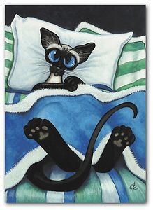 Siamese Cat Nap Kitten All Tucked in Pet ArT -  Art of AmyLyn Bihrle