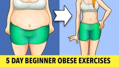 Beginner Obese Exercises For Weight Loss Weight Loss Challenge, Workout Challenge, Weight Loss Journey, Gym Youtube, Cardio, Gym Workout For Beginners, Beginner Workouts, Train Hard, Excercise