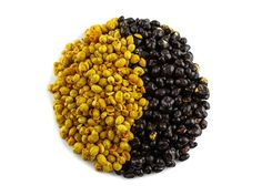 Hey, we are little, yellow, super healthy but a little bit sour because we contain so much vitamin C! But we are also covered in dark chocolate so that sweetens us up a bit! Dried Fruit, Vitamin C, Blackberry, Sugar Free, Gluten Free, Vegan, Chocolate, Dark, Yellow